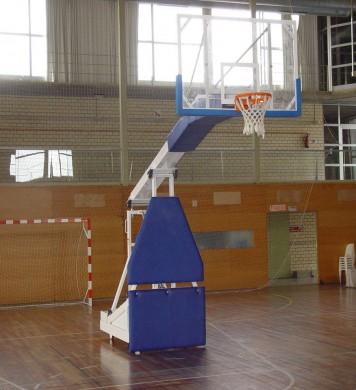 Professional basketball goal
