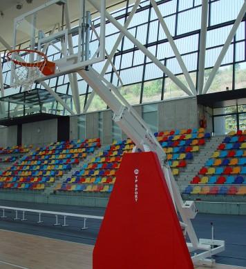 Canasta baloncesto trasladable elevable